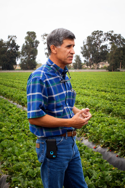 Oxnard Strawberry Farmer